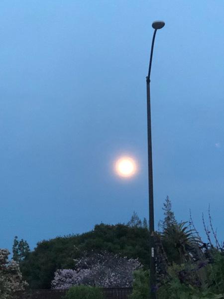 Random light pole against the sun.
